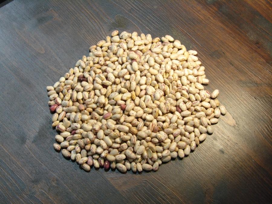 Μπαρμπούνια Καστοριάς (Χάντρες)